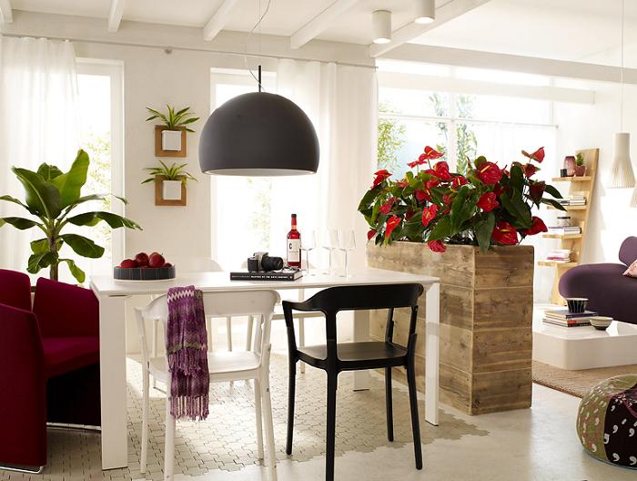 Цветы, расположенные на высокой тумбе, также смогут принять участие в зонировании комнаты. / Фото: dekorin.me
