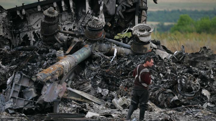"""Жертвами малайзийского """"Боинга"""" стали все прокуроры Украины"""