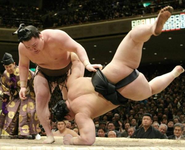 Самые интересные факты о борьбе сумо