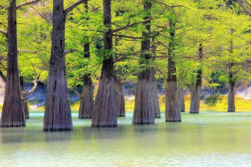 Уникальное озеро Сукко