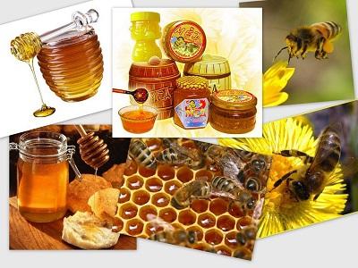 Лечение пчелами, медом и травами…