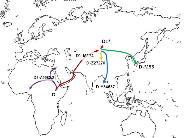 Айны: долгий путь через века история