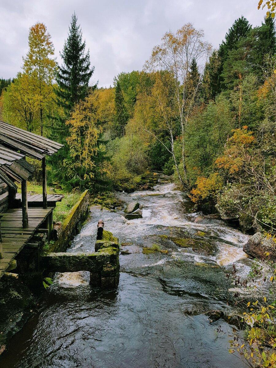 Достопримечательности Выборга поездка,Россия