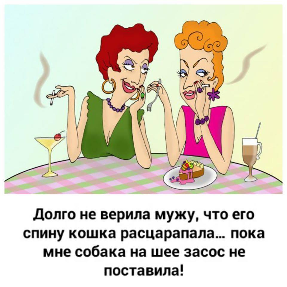 Две подруги встречаются. — Ты говорят замуж вышла?... Весёлые,прикольные и забавные фотки и картинки,А так же анекдоты и приятное общение