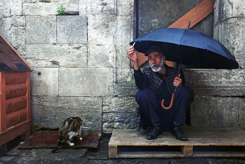 Чем бедность опасна для мозга и почему это касается всех бедность,мозг,наука