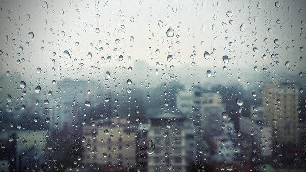 """Журналист """"Дождя"""": """"После Ли…"""