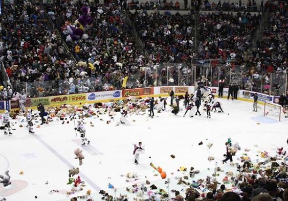 В США во время хоккейного ма…
