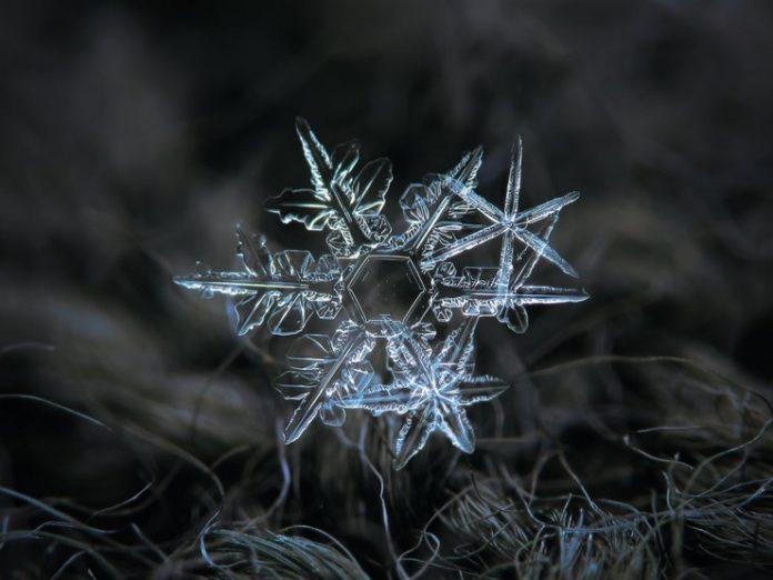 Вот как в действительности выглядят снежинки (30 фото)