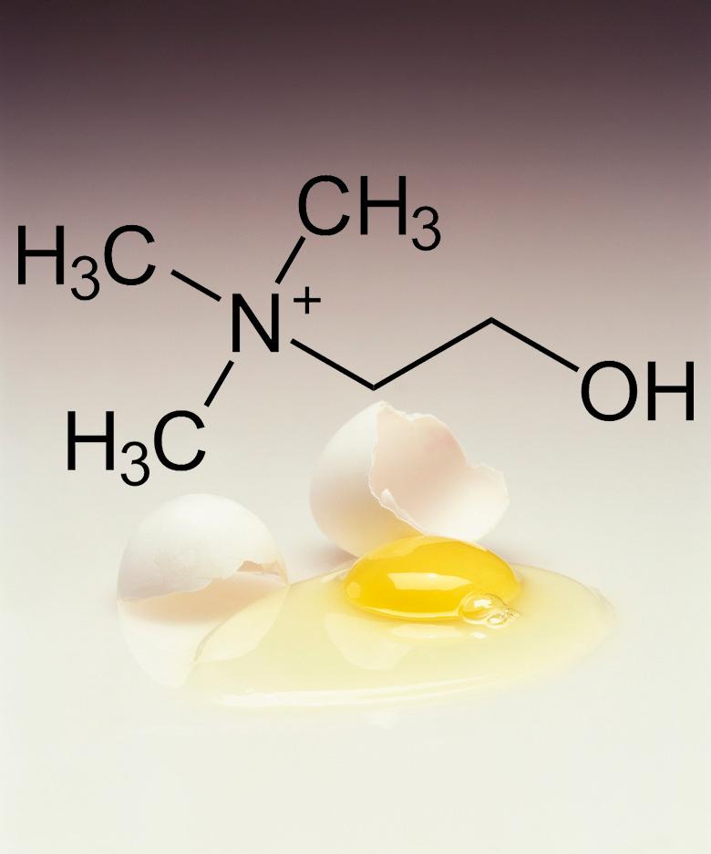 Важный холин: Лучшие источники витамина В4 витамин в4,здоровье,холин