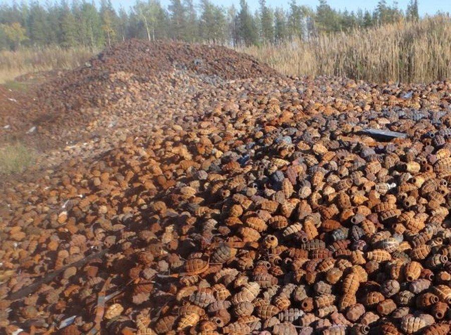 Сходил за грибочками: необычная находка в лесу