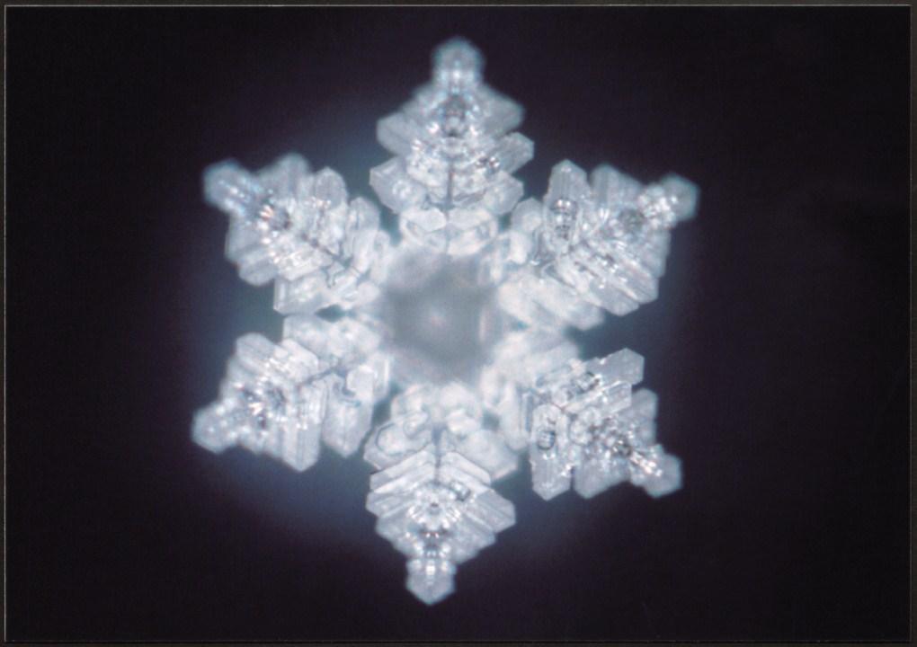 основное масару эмото фото кристаллов воды помощью