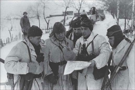 «Зимняя сказка»: кровавая операция украинских и латышских карателей в Белоруссии история