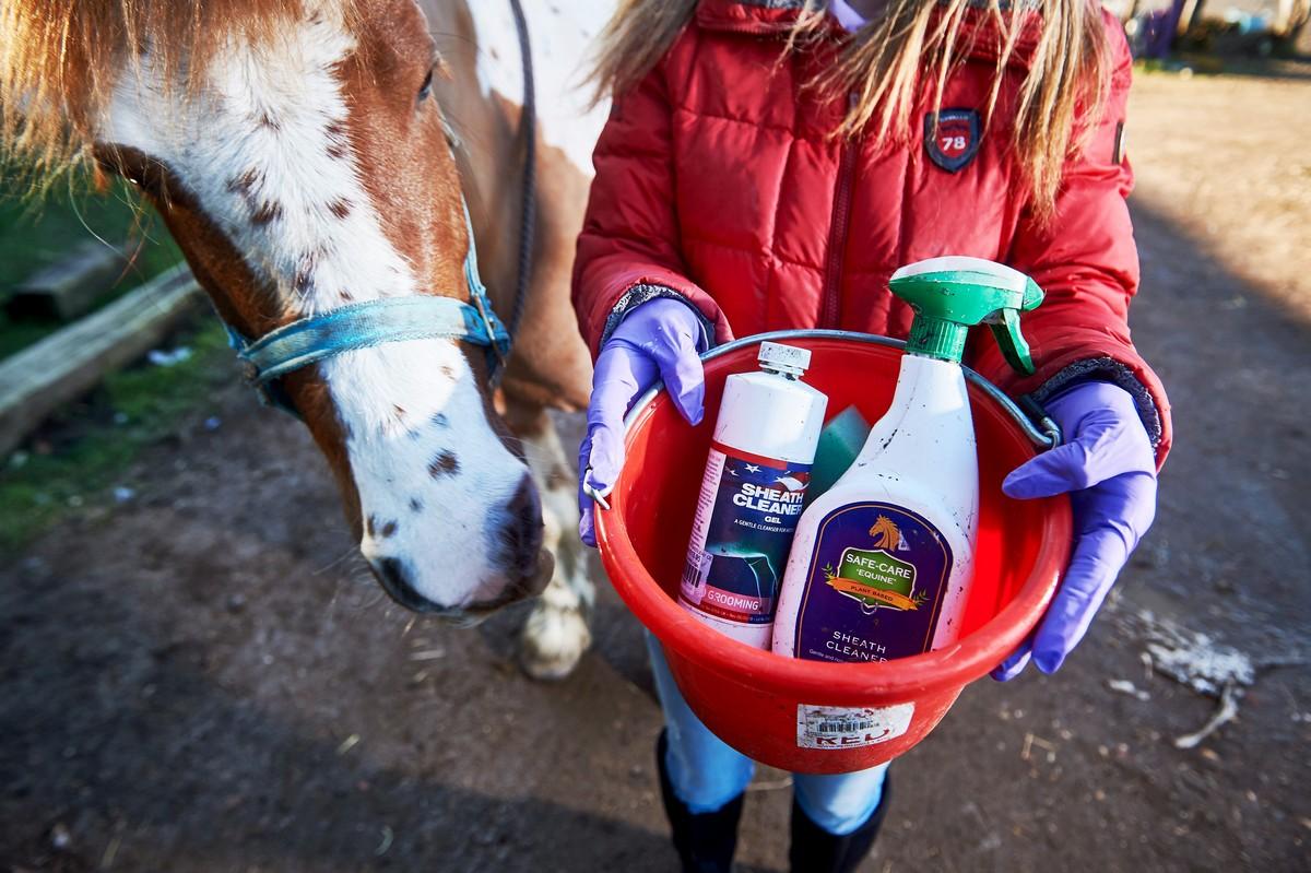 Есть такая работа – чистка половых органов у коней