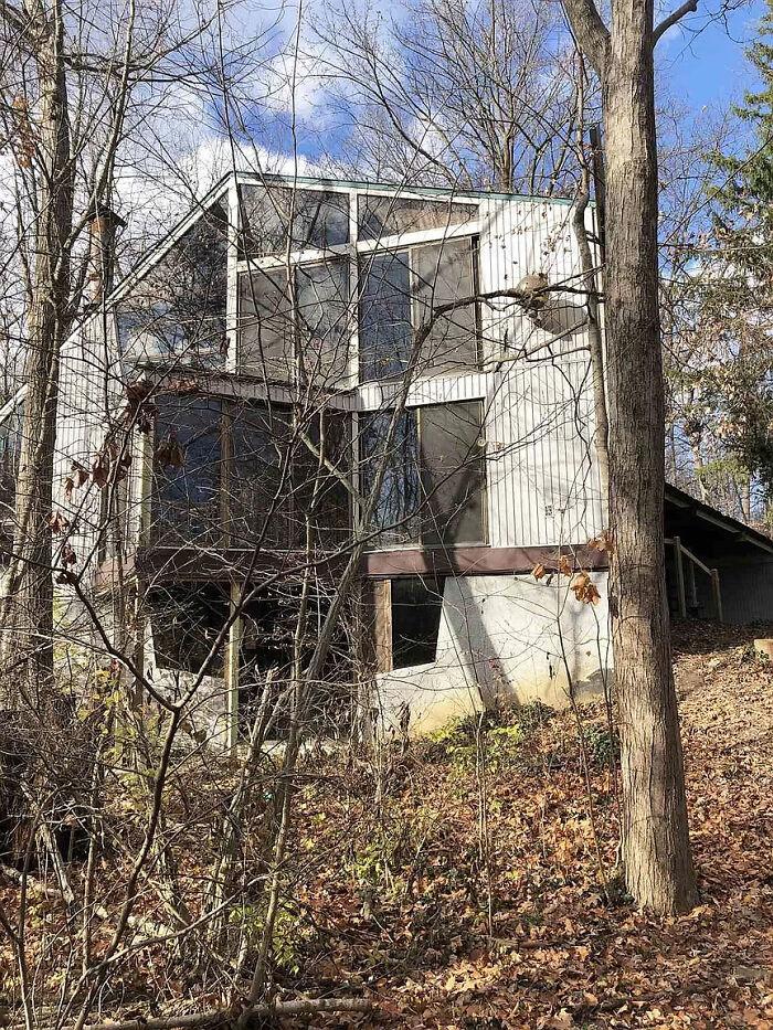 Пара купила покрытый коврами дом, заброшенный с 70-х годов, и это словно безумная капсула времени архитектура,идеи для дома,интерьер и дизайн,ремонт и строительство