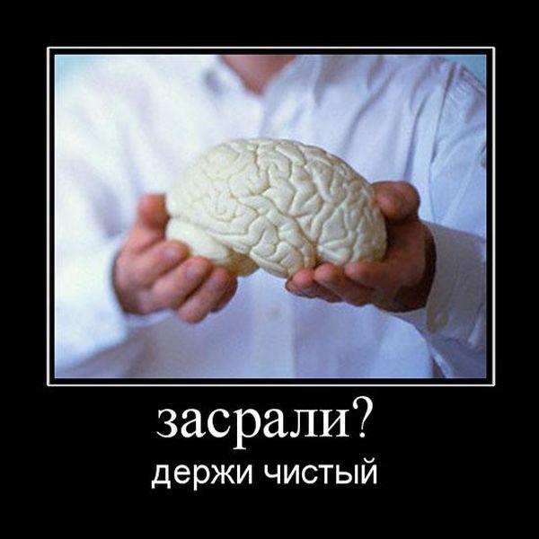 Приколы про мозги картинки