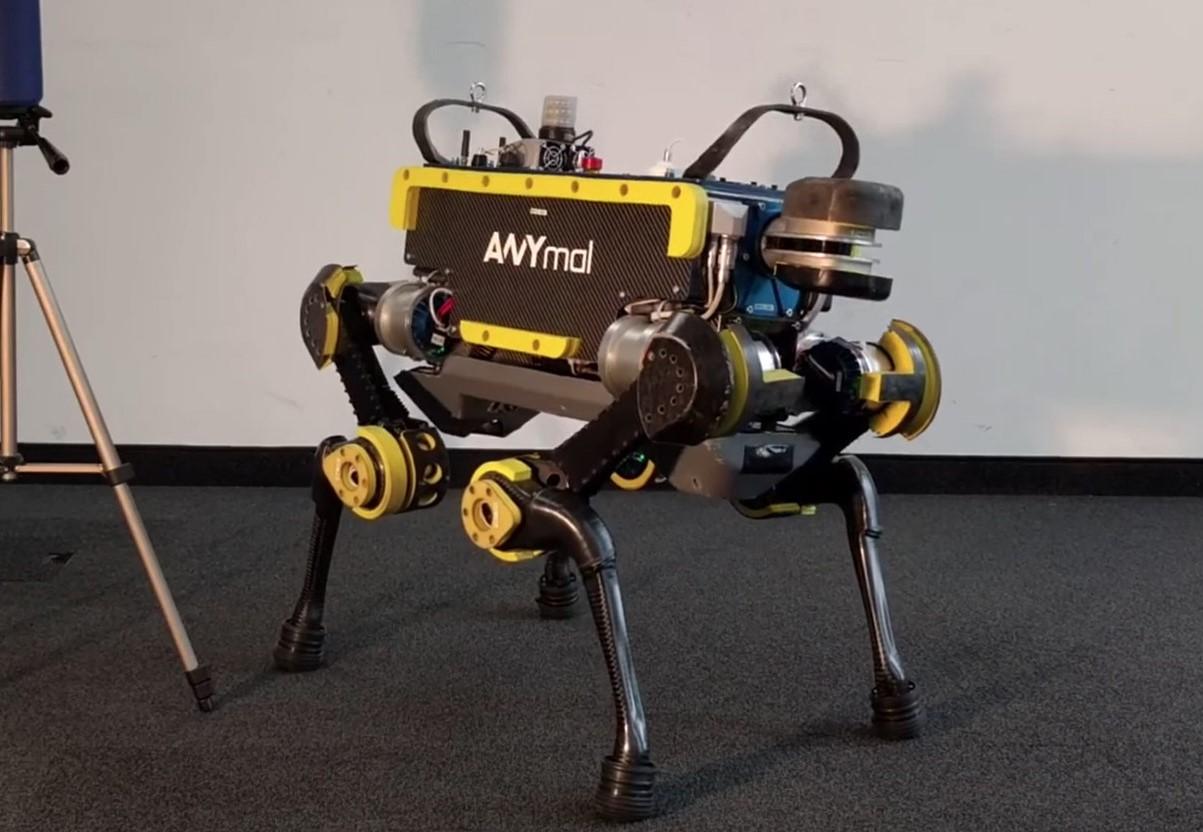 Робот-танцор - звезда любой …