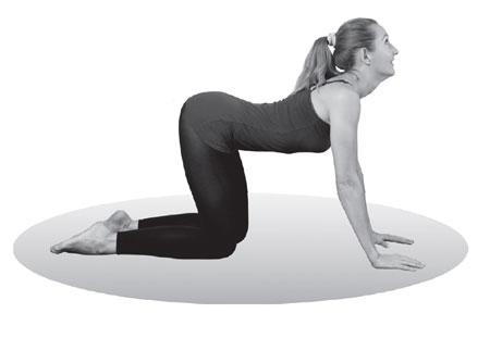 Здравствуй, осанка! 5 упражнений для мышц спины