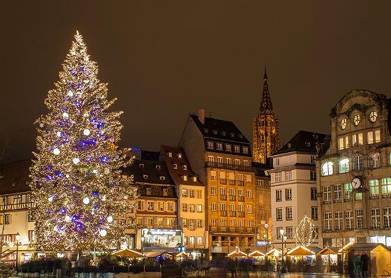 Почему ёлка? история,Новый год,общество,праздники,Рождество
