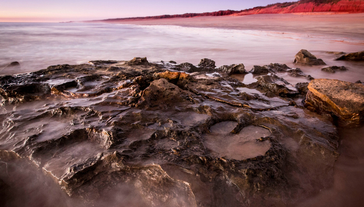 Крупнейший в мире след динозавра найден в Австралии