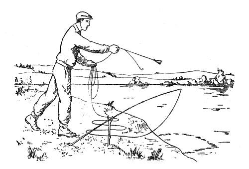 10 гениальных способов ловить рыбу без удочки