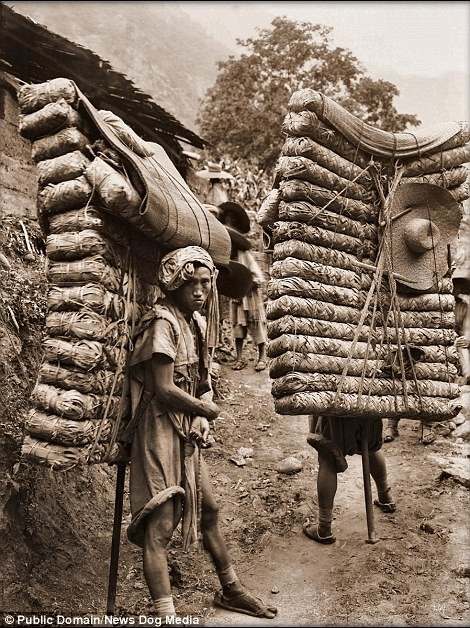 Крестьяне с тюками чая, провинция Сычуань, 1908 год Цин, китай, фотография, эпоха