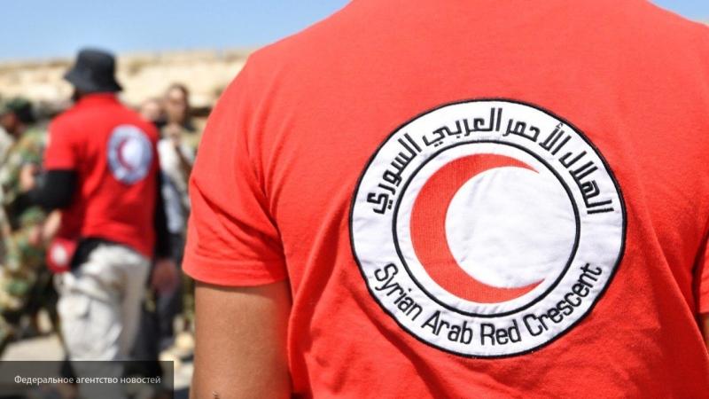 Красный полумесяц ввез медикаменты в частично освобожденных от курдов Рас Аль-Айн