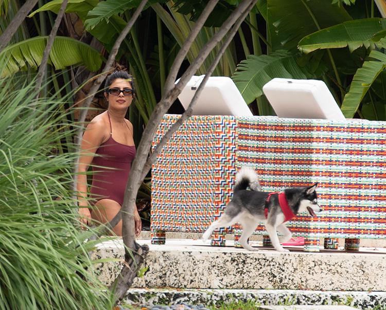 Между нами, девочками: Софи Тернер и Приянка Чопра отдыхают без мужей в Майами Звезды,Папарацци