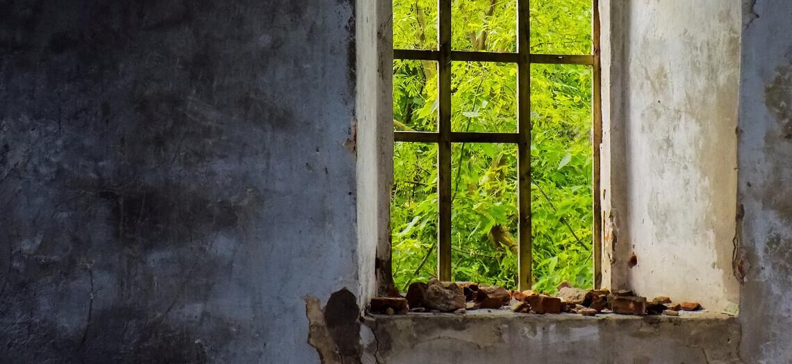 Остров-убийца: как выглядит место, которое в народе называют проклятым