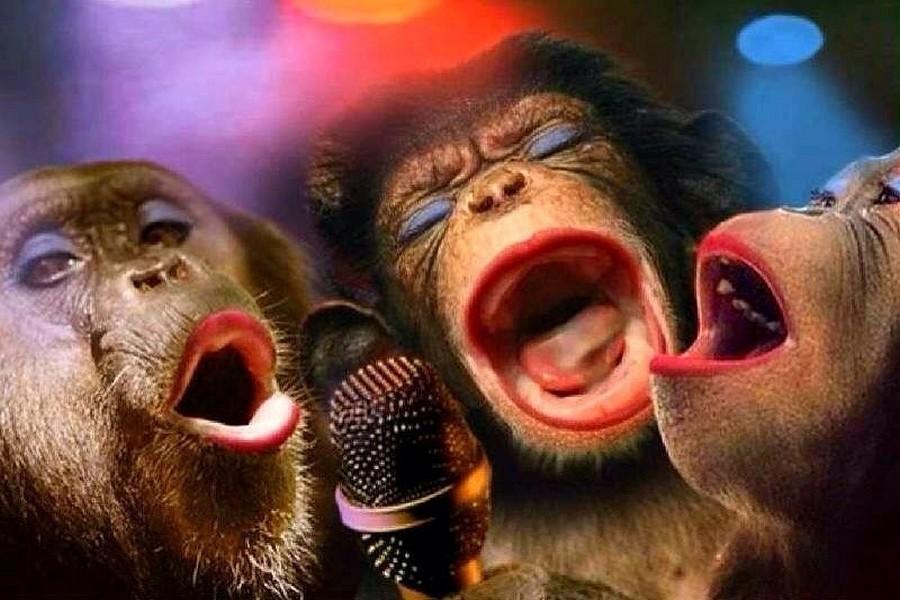 кого-то есть открытка с тремя обезьянами встречу
