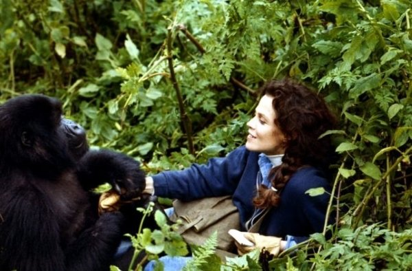 12 фильмов о женщинах, которые стали легендами