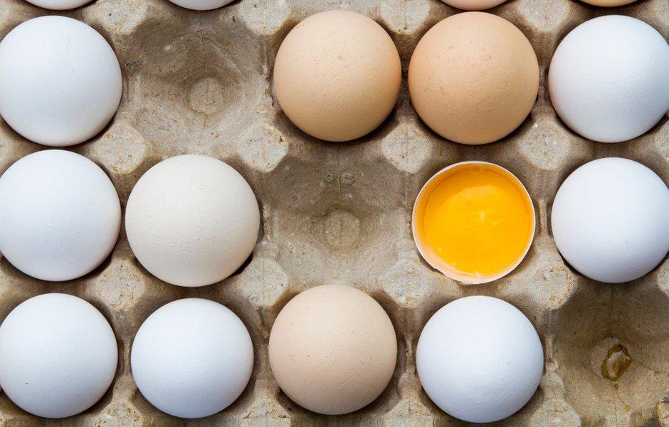 Белое или коричневое: есть ли отличия у куриных яиц разного цвета? здоровье,питание,полезные продукты,полезные советы