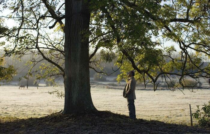 Понадобится дерево и друг. ¦Фото: ya.ru.