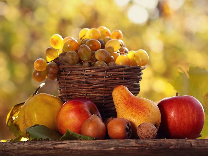 5 секретов щедрого урожая для огородника
