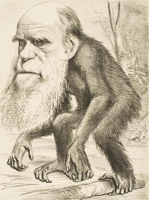 """Зачем по сей день """"впаривают"""" теорию Дарвина в учебных заведениях?"""