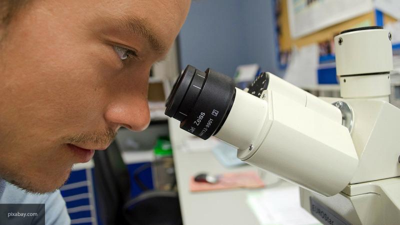 Ученые из Бразилии назвали новый неизвестный науке вирус в честь водяной нимфы Яры