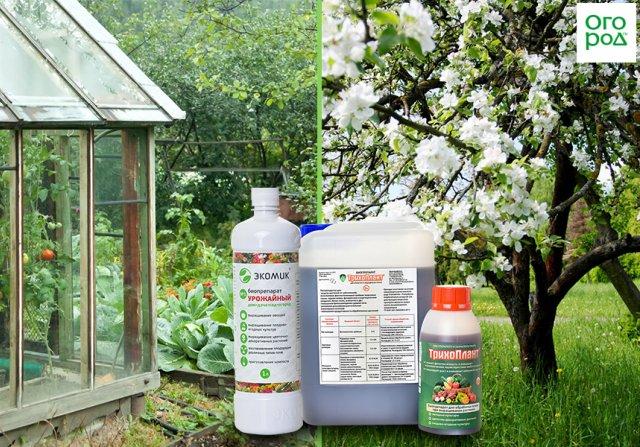Препараты против болезней растений