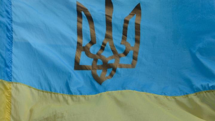 """От мяса до цемента: Краткая история """"санкционной войны"""" между Украиной и Россией украина"""