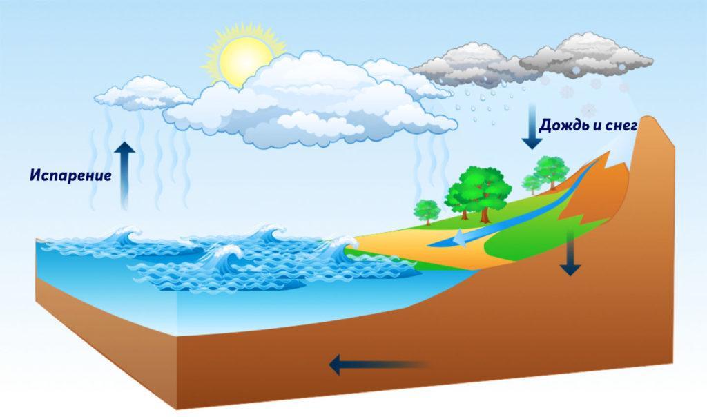 Какая вода чище: дождевая или ледниковая? вещества, ледники, кристаллов, опускается, дождевая, различные, поверхности, осадки, ледников, образуется, Поэтому, ледниковая, накапливается, дождь, собирает, осуществляется, занимает, масса, когда, влаги