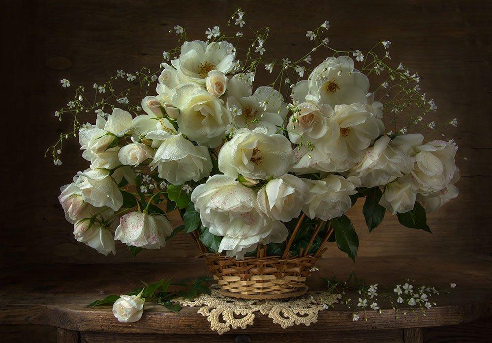 Цветники в деревенских домах томской обл фото бело-синие