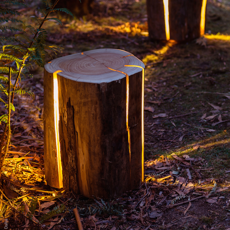 nature-inspired furniture duncan meerding cracked log lamps