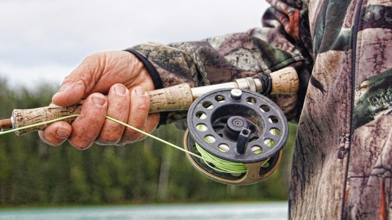 Житель США поймал золотую рыбу рекордных размеров Общество