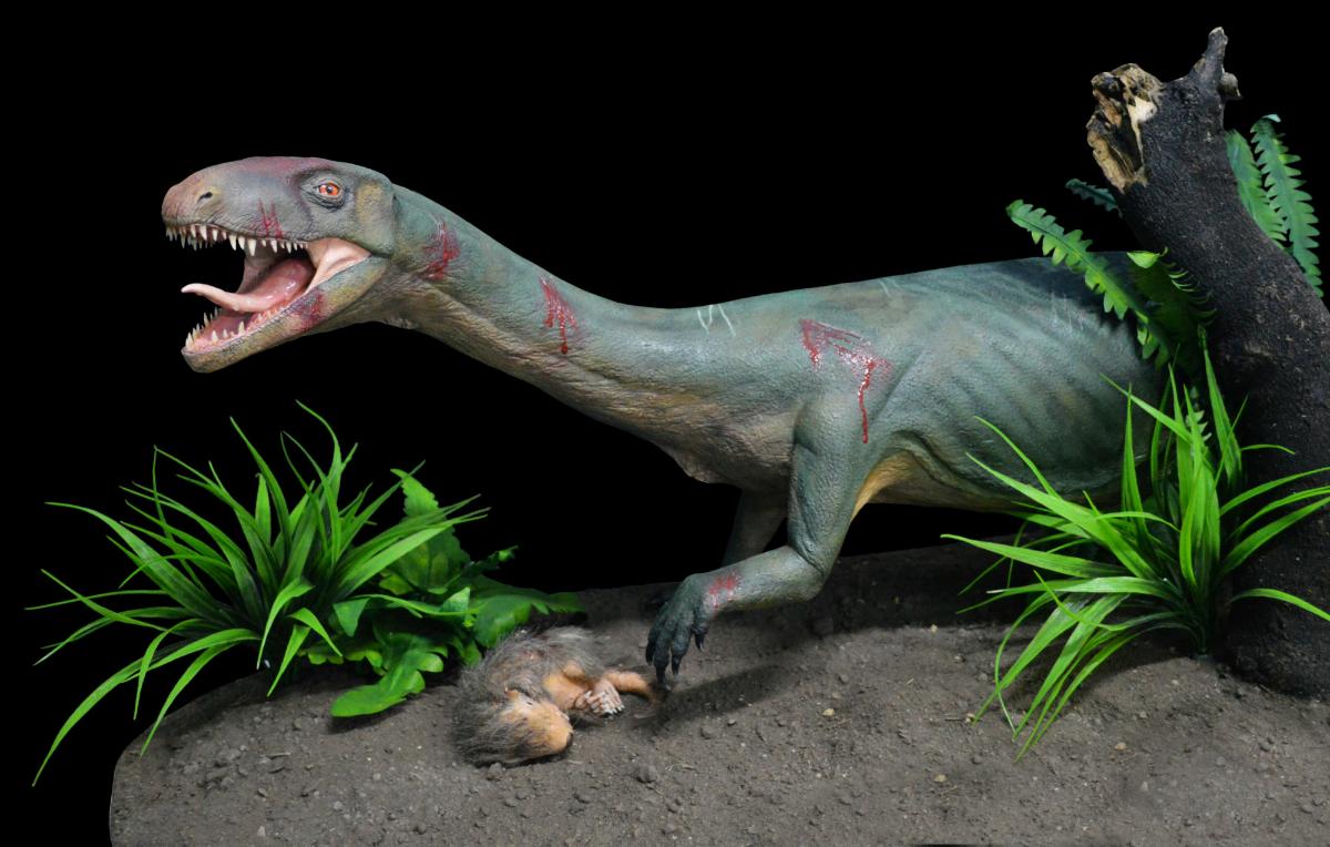 Древний предок динозавров сочетал черты птиц и крокодилов
