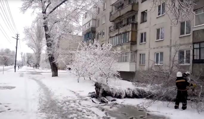 Безумные регионы: в Ростове …