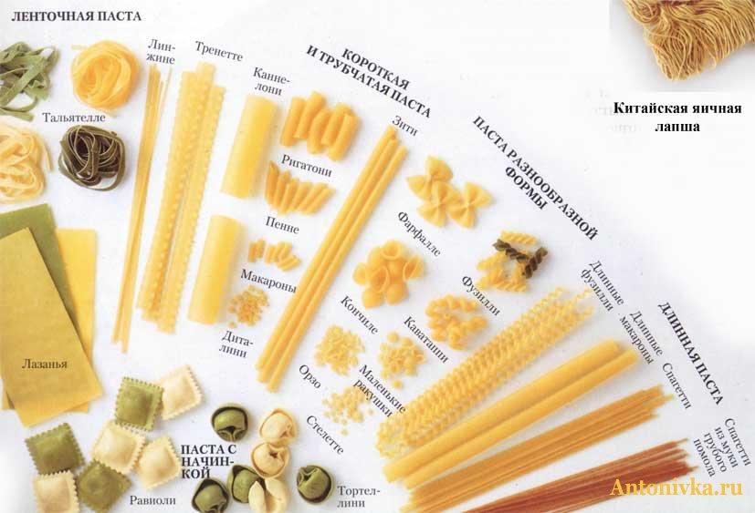 полон названия макарон по итальянски с фото большинство
