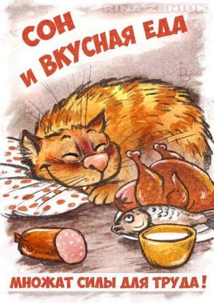 Мир-труд-мяу! Пятничные майские котики