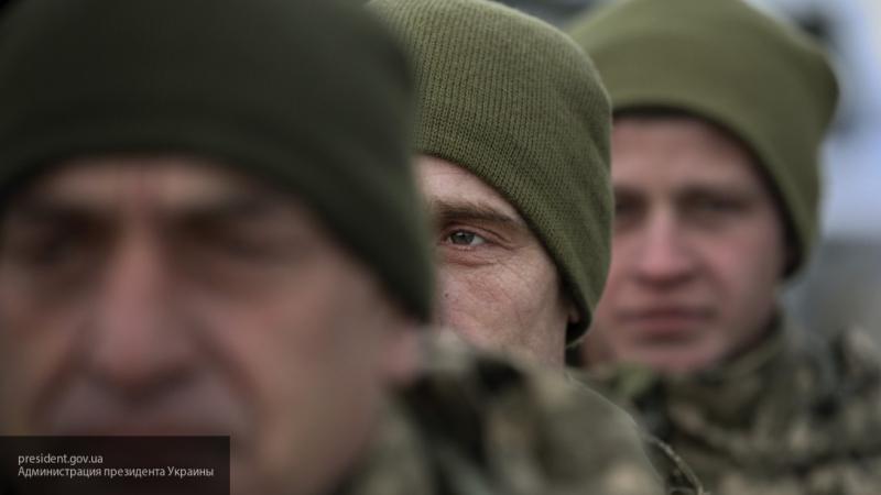 Попытка черепахи догнать лошадь — на Украине о разнице между ВСУ и армией России