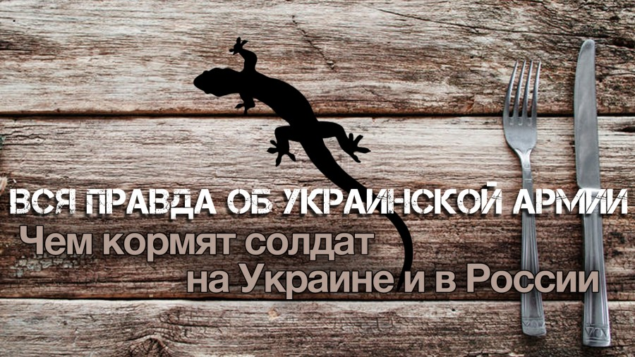 Вся правда об украинской арм…