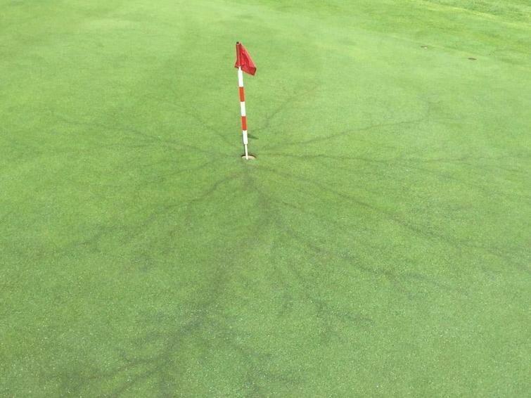 Молния ударила прямо в металлическую часть флажка для гольфа в мире, вещи, подборка, познавательно, удивительно