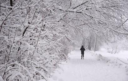 Военная техника помогает убирать снег в Москве
