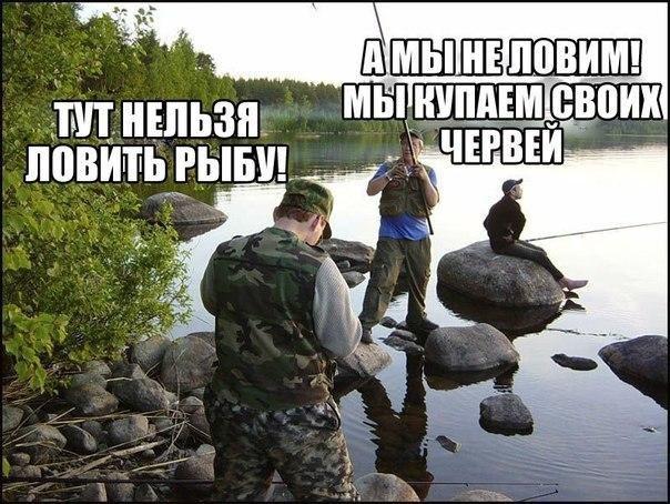 Войне, самые свежие смешные картинки с надписями до